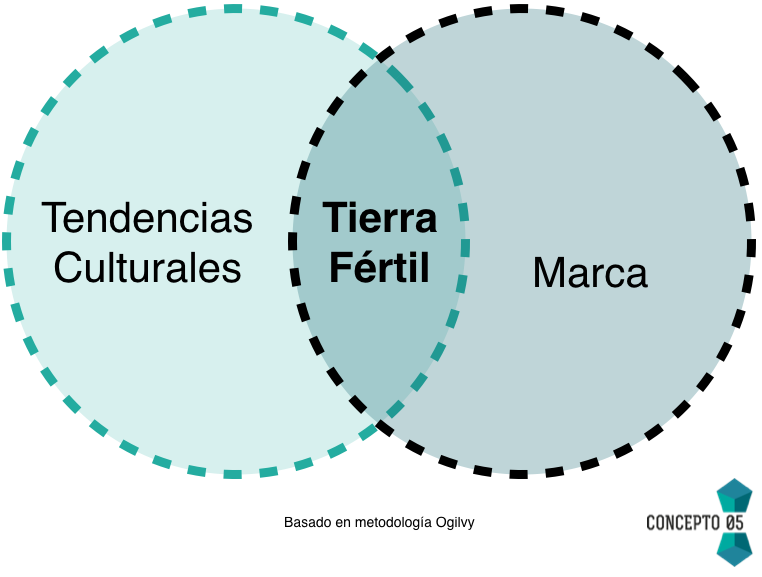 territorio de marca social media marketing